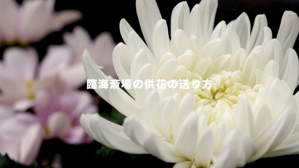 rinkai-flower