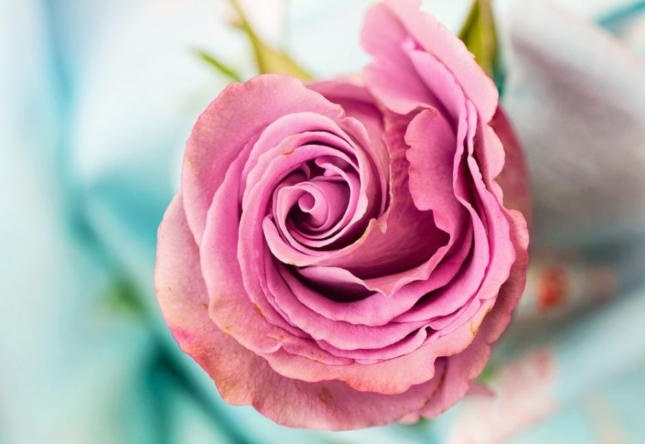 お別れ会、偲ぶ会、花